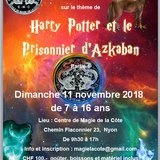 Atelier magie sur le thème de Harry Potter