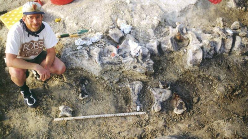 Paléontologie: découverte du plus grand pied de dinosaure, mesurant un mètre de long