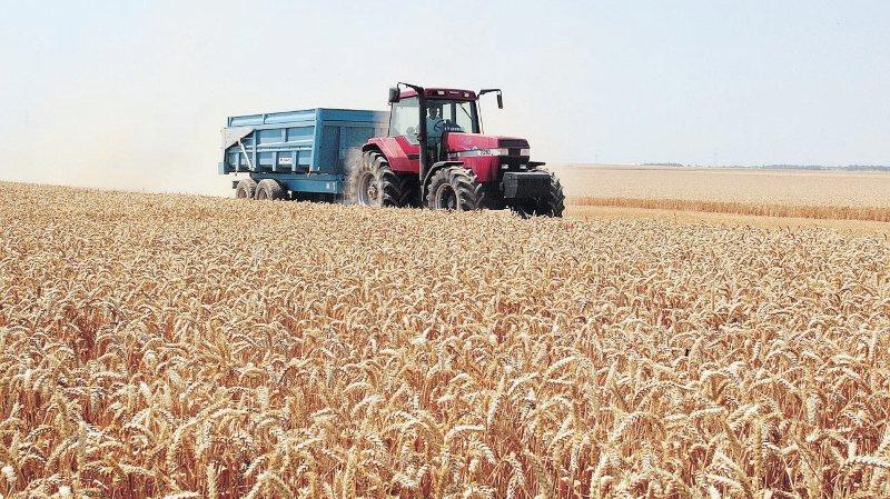 L'agriculture face à la sécheresse