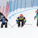 Audi Skicross Tour 2019