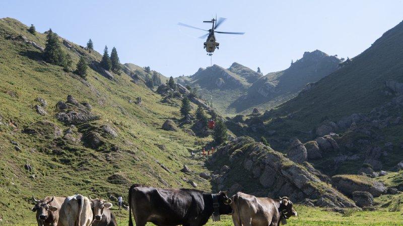 Canicule: les paysans suisses demandent l'aide de la Confédération