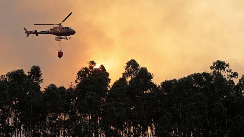 Un incendie s'est déclaré dans la région touristique de l'Algarve, dans le sud du Portugal, favorisé par l'air brûlant venu d'Afrique du Nord.