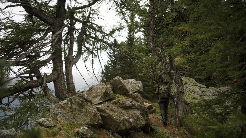 Grisons: chute mortelle d'un jeune chasseur près de Litzirüti