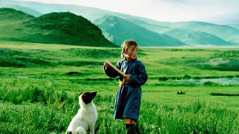 VdR Projection de Noël Le chien jaune de Mongolie