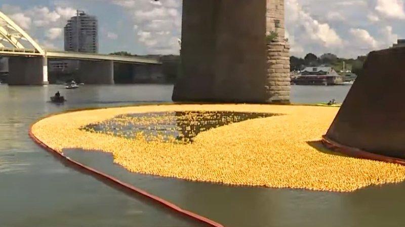 Etats-Unis: 200'000 canards en caoutchouc lâchés sur l'Ohio pour la bonne cause