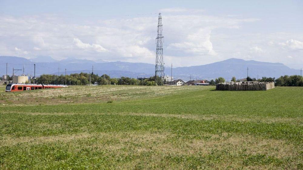 Le chantier du dépôt-atelier ferroviaire tant attendu par la compagnie du Nyon–St-Cergue n'a pas encore débuté à l'Asse. Le premier coup de pioche pourrait n'être donné qu'en 2019.