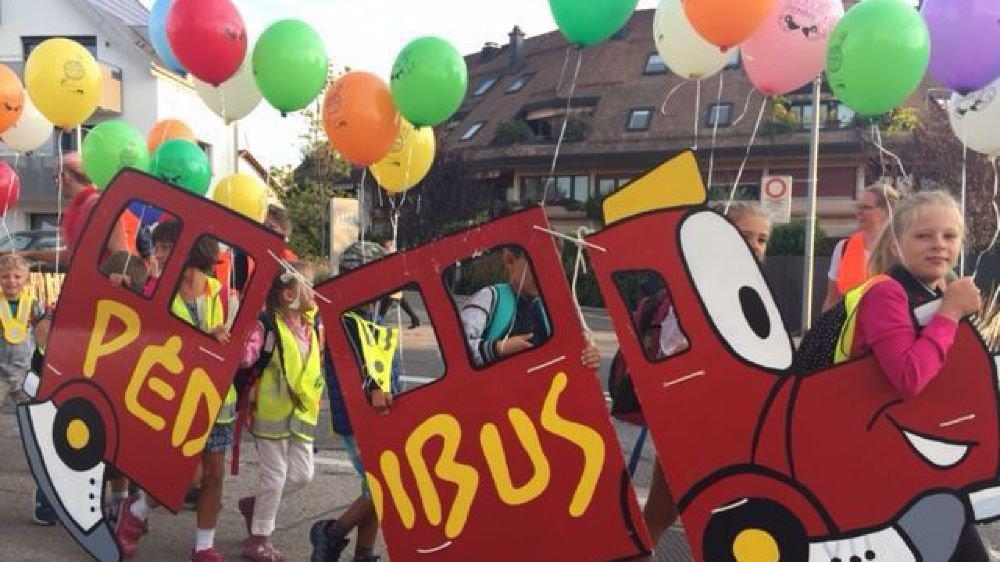 """Vendredi matin, deux cortèges Pedibus ont traversé Gland pour fêter la """"Journée internationale à pied à l'école"""". Et le lancement d'une nouvelle mouture du programme qui inclut les aînés."""