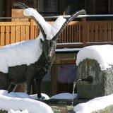 Visite guidée de Zermatt (allemand)