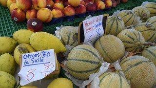 """Votations fédérales: vers un double """"non"""" aux initiatives agricoles, selon les derniers sondages"""