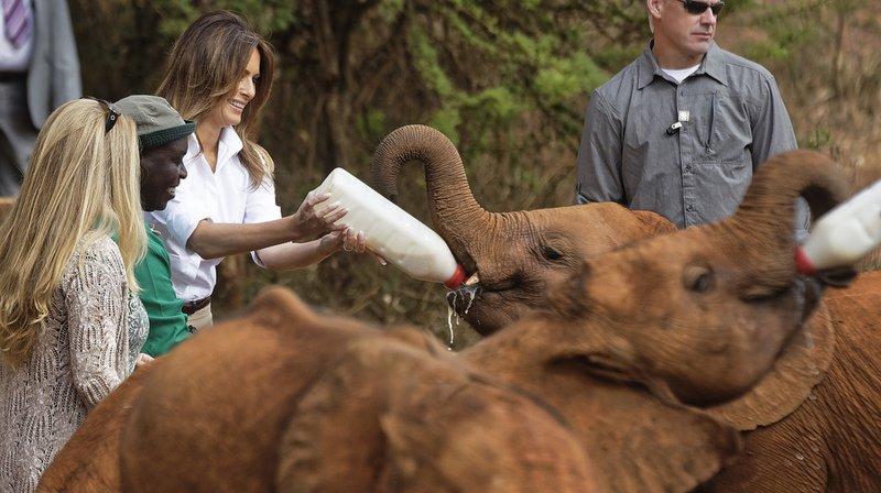 Kenya: Safari et bébés éléphants au programme de la visite de Melania Trump