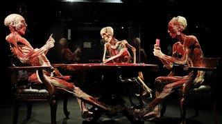 """Lausanne: l'exposition de corps plastinés """"Human Bodies"""" interdite par le Tribunal cantonal"""
