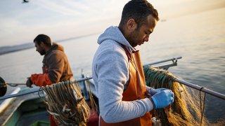 La pêche de féra en chute libre dans le lac Léman
