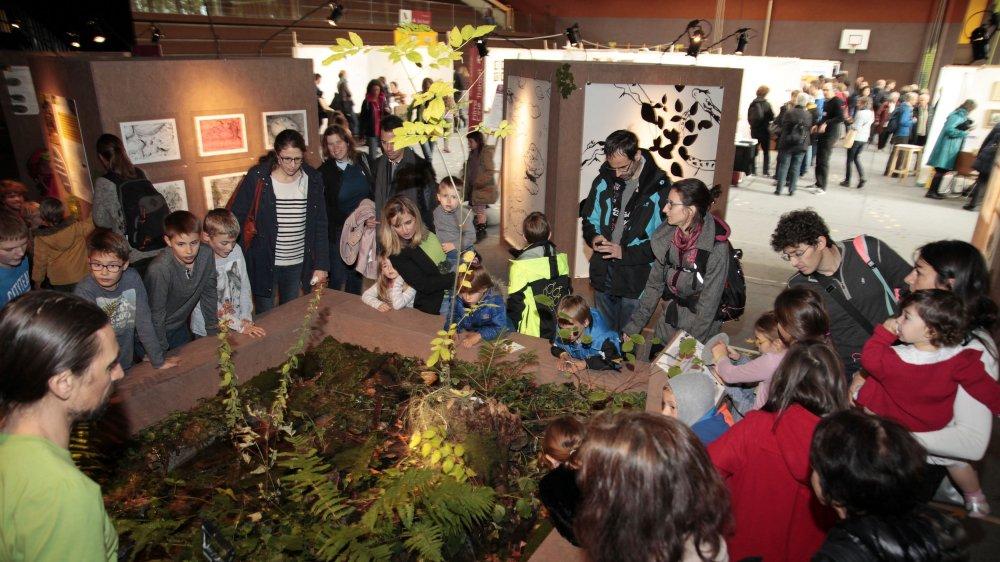 Un public familial a découvert et apprécié les propositions du Festival Salamandre à Beausobre.