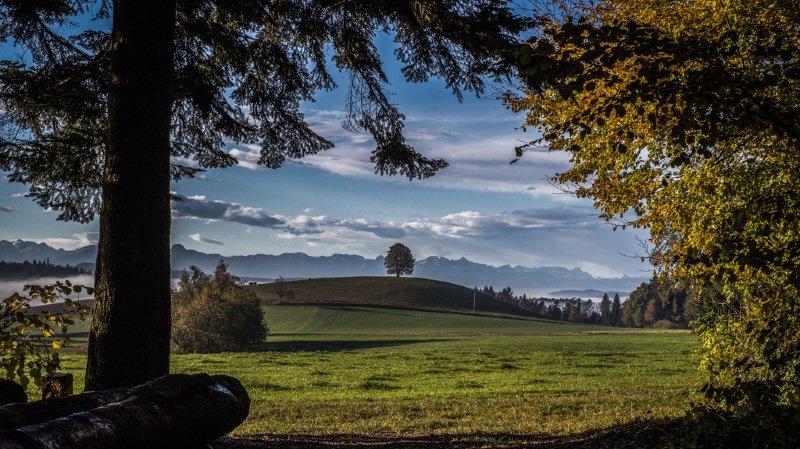 Météo: la Suisse pourrait vivre une journée estivale ce lundi avec des records de température