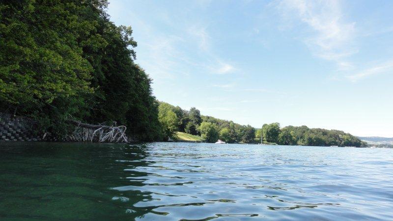 Rives Publiques s'oppose aux zones naturelles «sur mesure pour les gros contribuables de Gland»