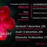 EVelles - Concert d'hiver