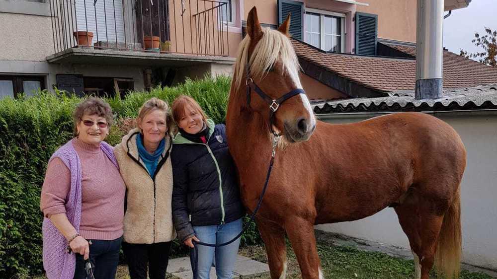 A l'arrivée à Perroy, de gauche à droite, Christiane Rosset et sa fille Dominique, Joanne Neyroud, sa petite-fille et le cheval Henri.