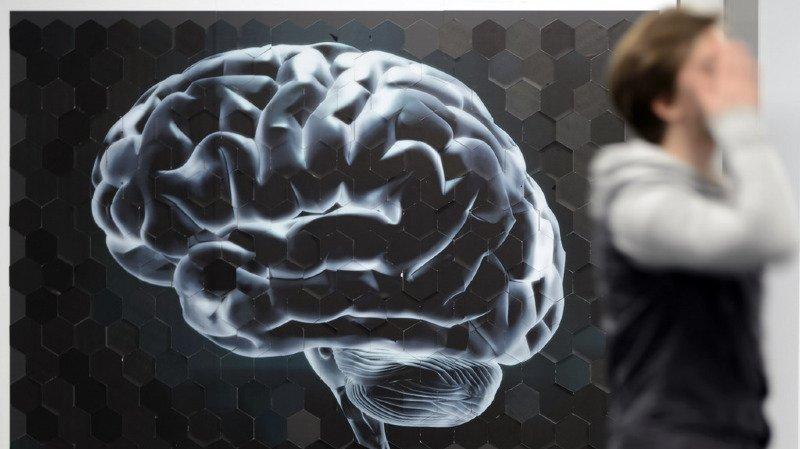 Entre une voix douce et un cri de colère, le cerveau réagit plus vite à la colère. Simple instinct de survie.(illustration).