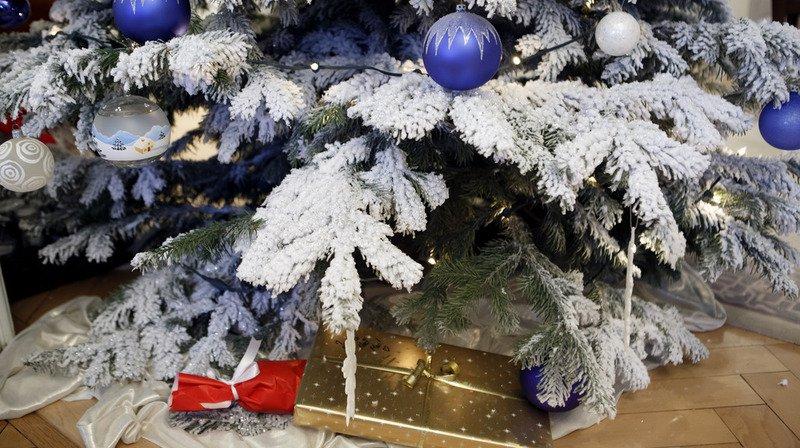 Contrairement aux sapins en plastique, les arbres de Noël naturels présentent un bilan carbone neutre.