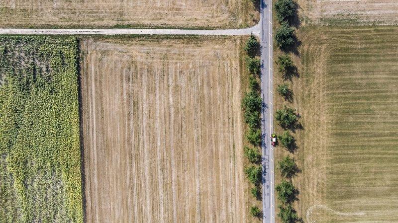 Agriculture: une météo extrême avec sécheresse et grande chaleur a pesé sur les récoltes