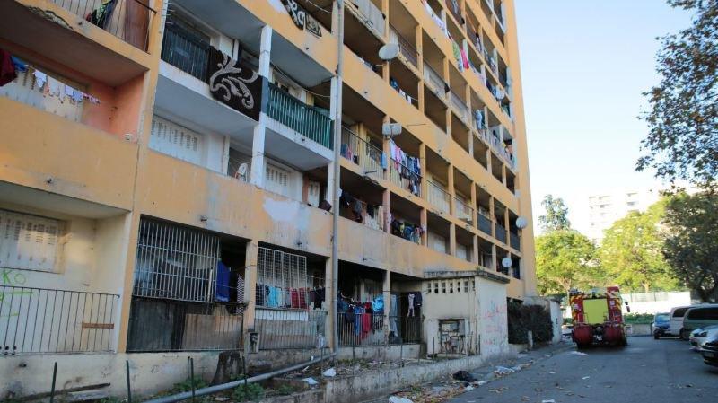 Au nord de Marseille, cet immeuble envahi par les rats, aux murs recouverts de moisissure et à l'électricité délabrée, faisait l'objet depuis plusieurs mois des plaintes des habitants et des voisins.