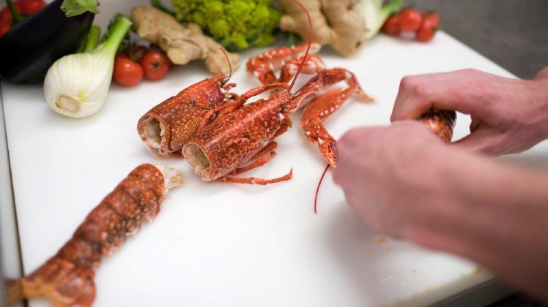 Les homards seront encore ébouillantés jusqu'à la fin février.