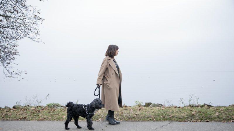 Les chiens peuvent se promener en toute sécurité au bord du lac à Rolle.