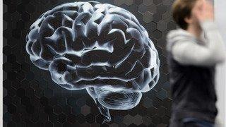 Entre la colère et la joie, le cerveau humain choisit plutôt la colère