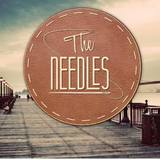 The Needles en concert au Container