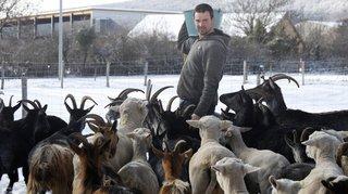 Quand des éleveurs de la région jouent les sauveurs