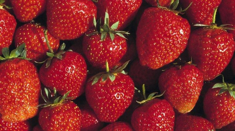 Consommation: Migros continuera de vendre des fraises en hiver, mais elles seront plus écologiques