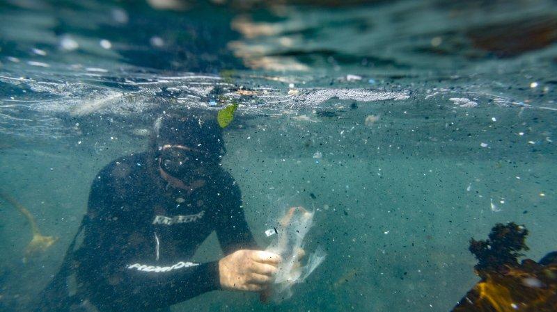 Plus de 300 millions de tonnes de plastique sont produites chaque année, dont une partie se retrouve dans l'océan (archives).