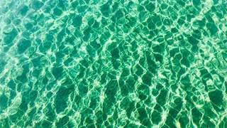 Question du jour: pourquoi les eaux du Léman sont-elles si claires?