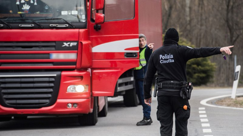 Aucune différence significative n'a été observée entre les véhicules suisses et les véhicules étrangers. (illustration)