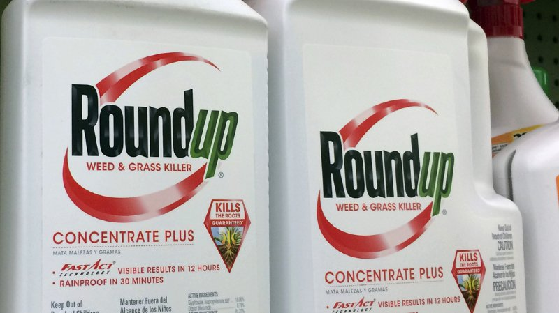 Santé: la justice américaine reconnaît à nouveau le rôle du Roundup dans un cancer