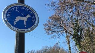 Pourquoi une signalisation spécifique aux chiens à Bursinel?