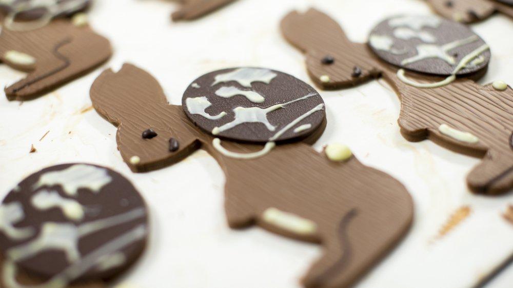 Un lapin en chocolat portant un oeuf, qui représente la terre, sur son dos. Le dessin des élèves de Begnins représente plusieurs symboles de Pâques en une pièce.