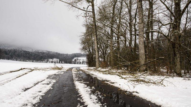 MBC: plusieurs incidents en raison de la neige