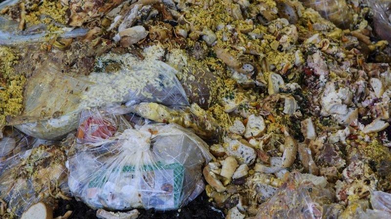 Lavigny: Ecorecyclage se voit décerner un Green Award pour son tri optique des déchets organiques.
