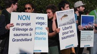 Manifestation à Fribourg contre un élevage de saumons