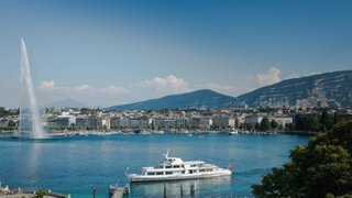 La Ville de Genève veut devenir plus végétale