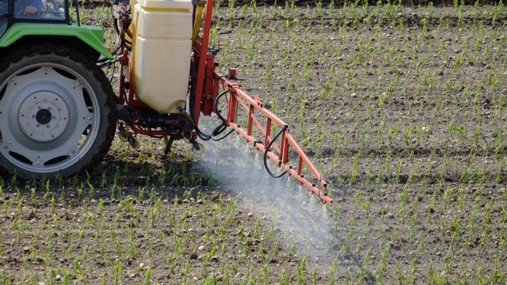 Face aux dégâts des pesticides, les agriculteurs se retrouvent en première ligne.