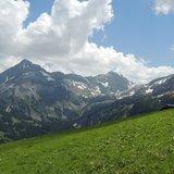 Mi-été sur l'alpage «Vorder Walig»