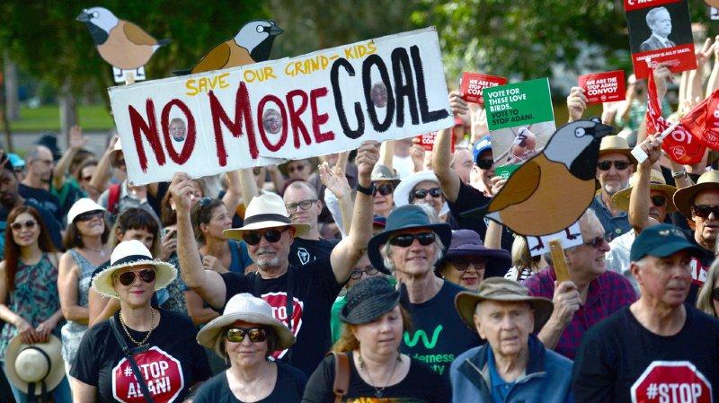 Australie: un minuscule oiseau bloque un projet de mine de charbon géante