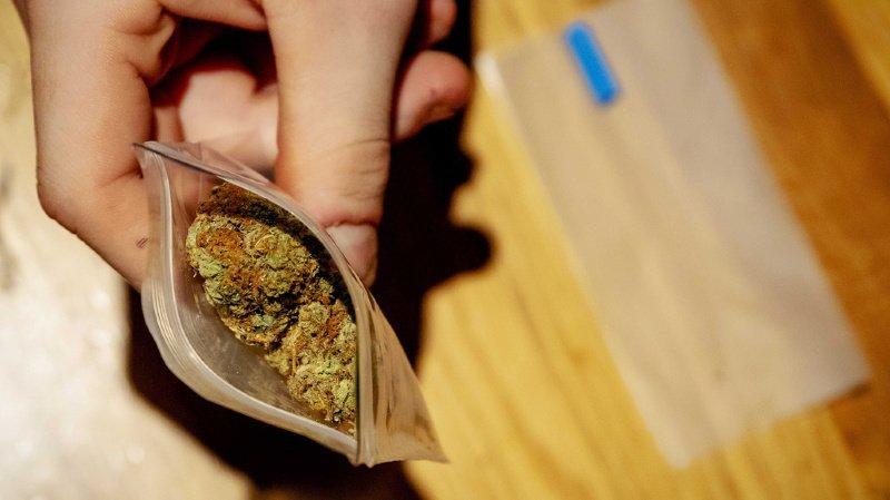 Cannabis: une commission veut dépénaliser la consommation et réguler le marché