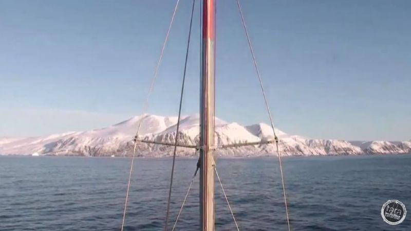 Entre 2009 et 2013, la goélette  de l'expédition Tara Oceans a parcouru 140'000 km sur tous les océans de la planète, pour percer les mystères de l'écosystème planctonique.