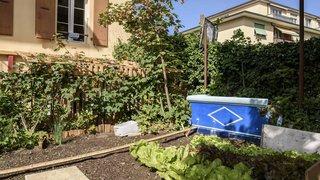 Nyon: jardiniers en herbe ou expérimentés attendus à la Vie-Là