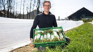Les asperges locales,  en vert et contre tous