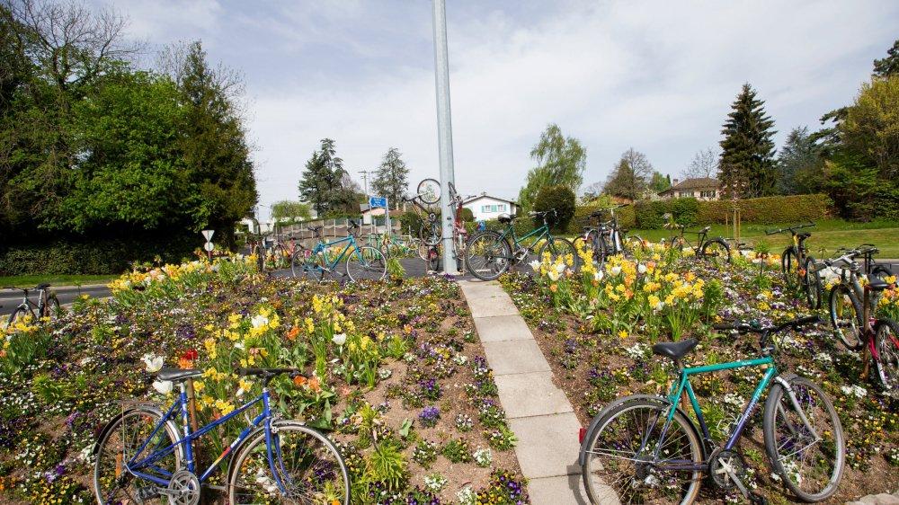 Une soixantaine de vélos avait été installée à Morges début avril pour le Tour de Romandie.