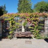 Visite guidée des jardins du Château Mercier
